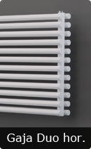Radiators Room Pipe Gaja Duo Horizontal